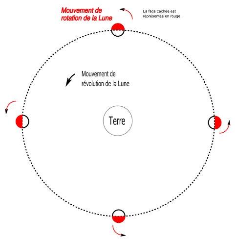 rotation lune